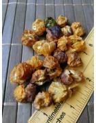 Cheiro Roxa (Dried chilli)